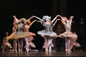 beauty sle box programs the sleeping beauty the national ballet of canada