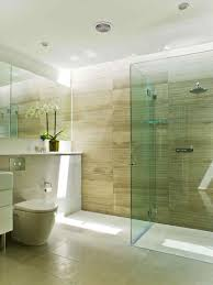 Cheap Bathroom Renovation Ideas by Bathroom Design Budget Of Simple Bathroom Bath Remodel Ideas