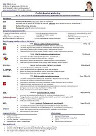 Best Resume Fonts For Business by Resume Best Resume Font Size Sample Social Media Resume