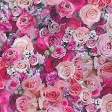 pink wallpaper for walls pink roses wallpaper urban flowers photographic effect paste the