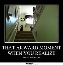 Evil Cat Meme - evil memes funny evil pictures memey com