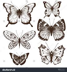 vector set sketch butterfly vintage style stock vector 399628828
