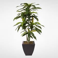 dracaena 4ft real touch dracaena massangeana tree in a contemporary metal