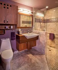 handicapped bathroom designs u2013 thejots net