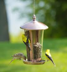 how to keep birds away from patio bird feeding problems can be many but they can all be defeated