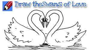how to draw swans of love real easy for kids and beginners