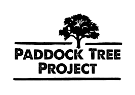 paddock tree project trees for