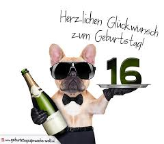 geburtstagsspr che zum 16 glückwunschkarte mit hund zum 16 geburtstag geburtstagssprüche welt