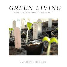 Downsizing Meaning 30 Day Simple Living Challenge Day Twelve Downsize Your Life