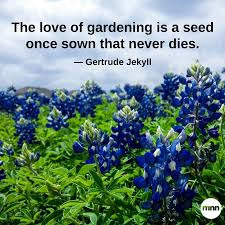 Kitchen Table Wisdom Quotes by 32 Inspirational Gardening Quotes Mnn Mother Nature Network