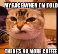 My Face When Meme - my face when i m told there s no more coffee memes and comics
