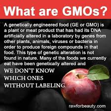 24 Best What Is A Gmo Images On Pinterest Primer Agriculture