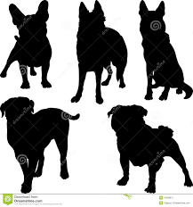 types of dogs vector silhouettes of different breeds of dogs in stock image