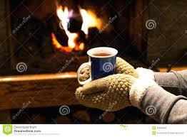 fireplace gloves vs welding home depot ll bean 1635 interior