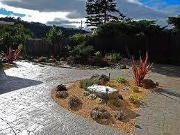 succulent landscaping drought tolerant garden design drought