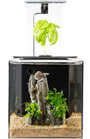 amazon com ecoqubec aquarium desktop betta fish tank for