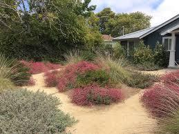 design and maintenance of native plant gardens 1 jim martin