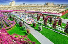 the dubai miracle garden u2013 fubiz media