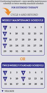 velcade bortezomib treatment schedule