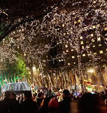sacramento christmas tree lighting christmas lights decoration