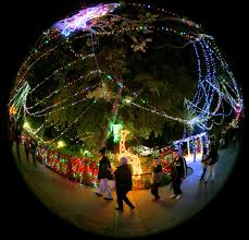 when do the zoo lights start reid park zoo gets a jump start on the holidays with craft beer