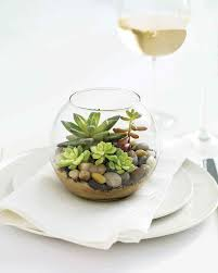 it u0027s alive how to make a terrarium martha stewart