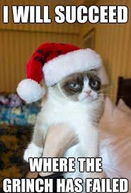 Funny Christmas Cat Memes - funny cats at christmas 15 funny christmas cats photos kitty