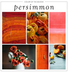 color of the season persimmon our aesthetic