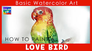 how to paint love bird with watercolor step by step how to draw