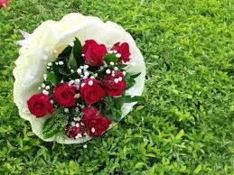 flowers beautiful grace roses flowers bridal red forever love