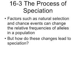 biology chp 16 evolution of populations powerpoint