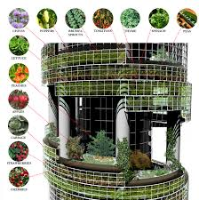 The Urban Garden Vancouver Vertical Agriculture In The Mainstream Plants Pinterest