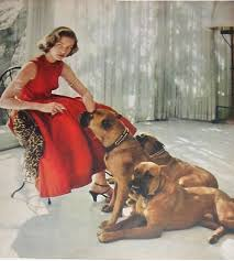 boxer dog mean famous boxer dogs u2026er i mean people lauren bacall dog and animal