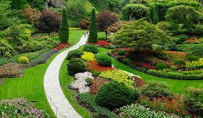 chatham landscape service professional landscapers in chatham ma