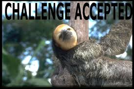 Sloth Meme Images - jimmyfungus com the best of sloths the best collection of sloth