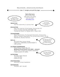 sle resume format for freshers pdf creator online resume creator software sidemcicek com