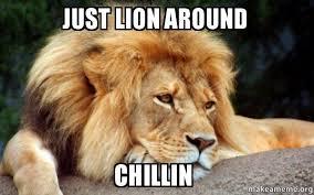 Lion Meme - just lion around chillin confession lion make a meme