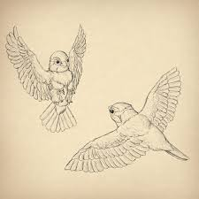 25 beautiful how to draw birds ideas on pinterest how to draw