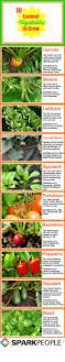 89 best how does your garden grow images on pinterest garden