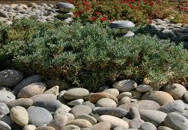 Bulk Landscape Rock by River Rock Fresno Clovis Ca Landscaping Supplies Cobble
