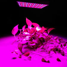 commercial led grow lights and 45w 135w reflector cup full spectrum led grow lights for