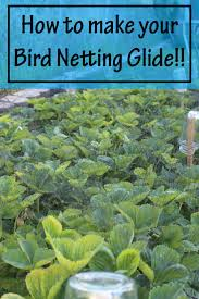 a garden hack how to make your bird netting glide stoney acres