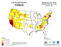 expect fall foliage weather affects