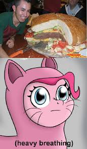 Heavy Breathing Meme - 590041 burger heavy breathing meme pinkie cat pinkie pie