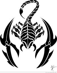 25 best scorpion images on pinterest tattoo ideas scorpio and