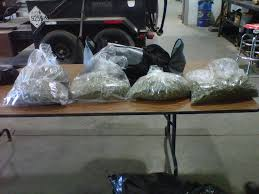 Weed Map Colorado by Illegal Crossing See The Confiscated Weed At The Colorado