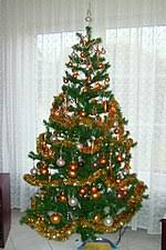 cristmas tree christmas tree