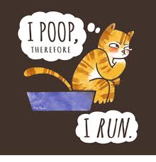 I Pooped Today Meme - i poop therefore kas fasen i run meme on me me