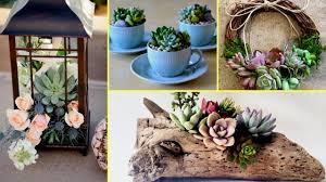 diy succulent plant terrarium ideas i home decor ideas 2017 i