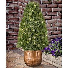 Artificial Topiaries - cone pre lit artificial topiary 6085519 hsn